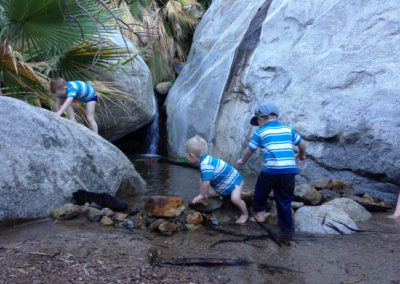 Boys playing at the desert oasis!